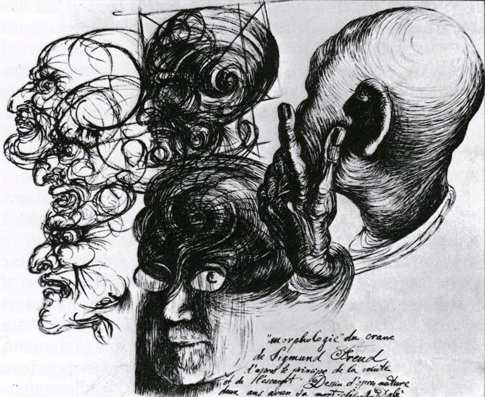 "Salvador Dalì, ""Morphologie"" du crane de Sigmund Freud"