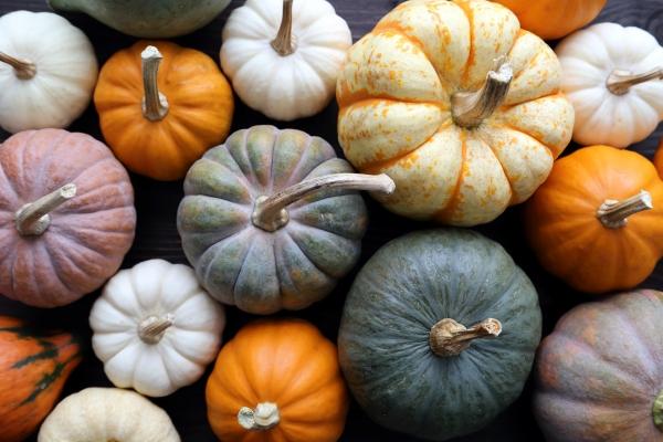 Automne : quels sont les fruits et légumes de la saison ?