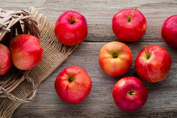 Les variétés de pommes et leurs caractéristiques