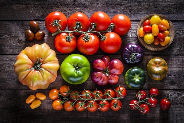 Tomatoes: 12 essential or unusual varieties - Quitoque