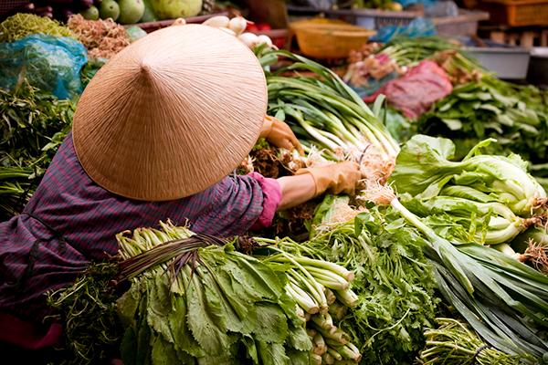 Cuisine asiatique : à la découverte des aliments emblématiques