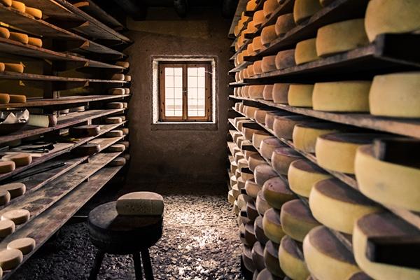 Les fromages de montagne : découvrez les variétés méconnues