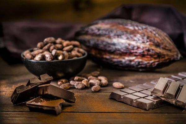 Partons à la découverte du chocolat !