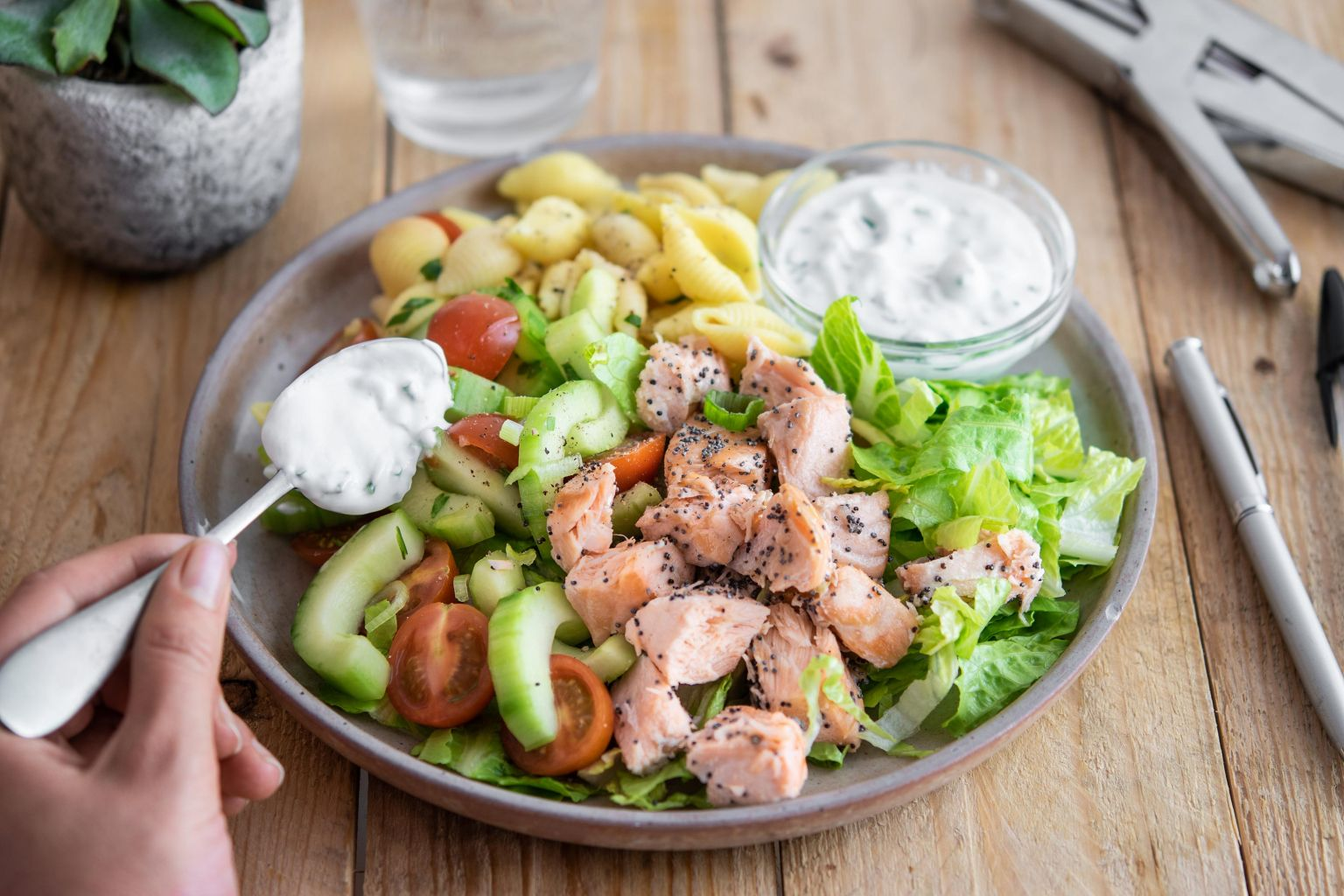 Salade romaine, saumon au pavot, pâtes conchiglie, tomates cerise