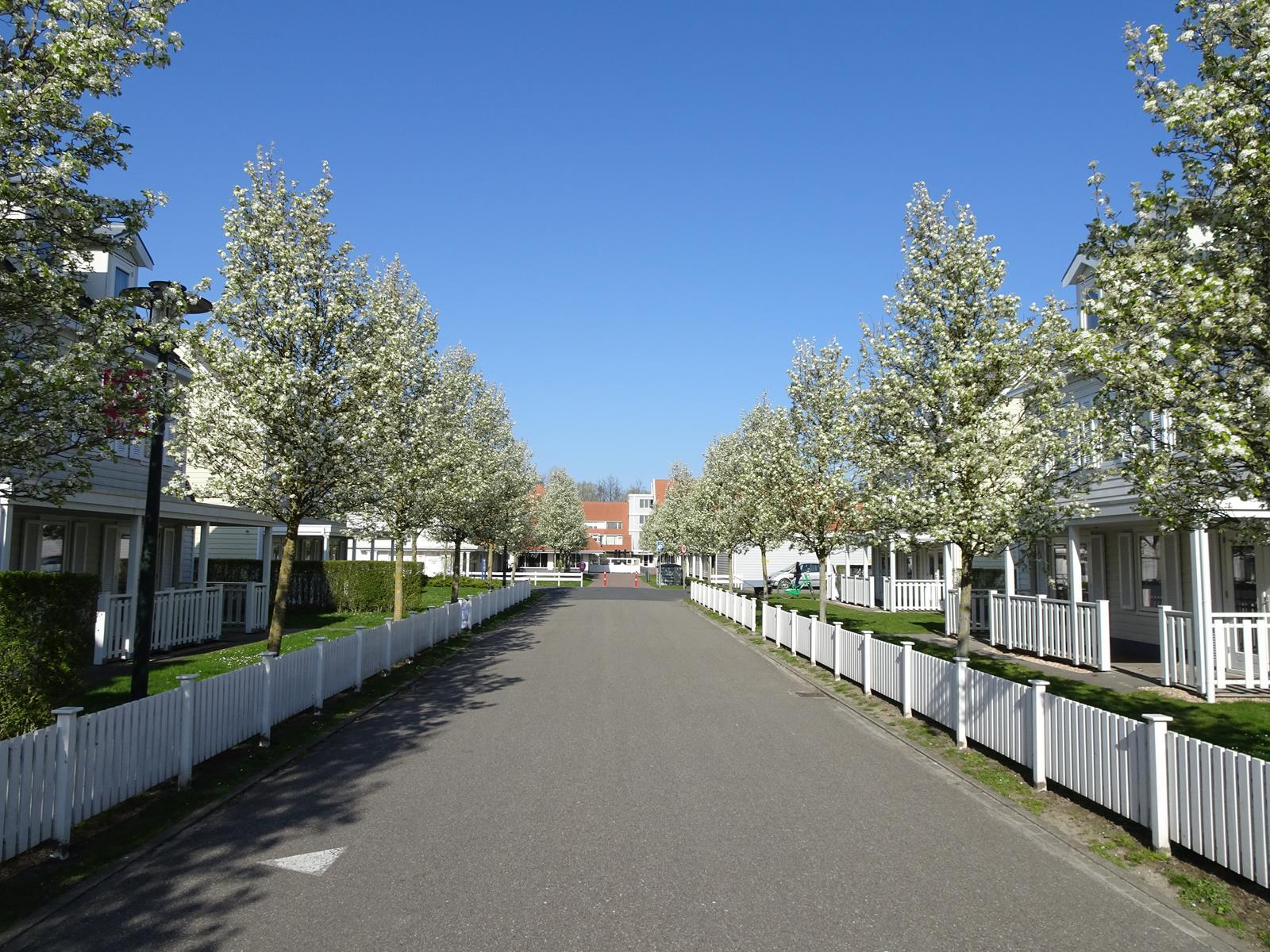 Vakantiehuis te koop Zeeland Bruinisse K41 (25).jpg