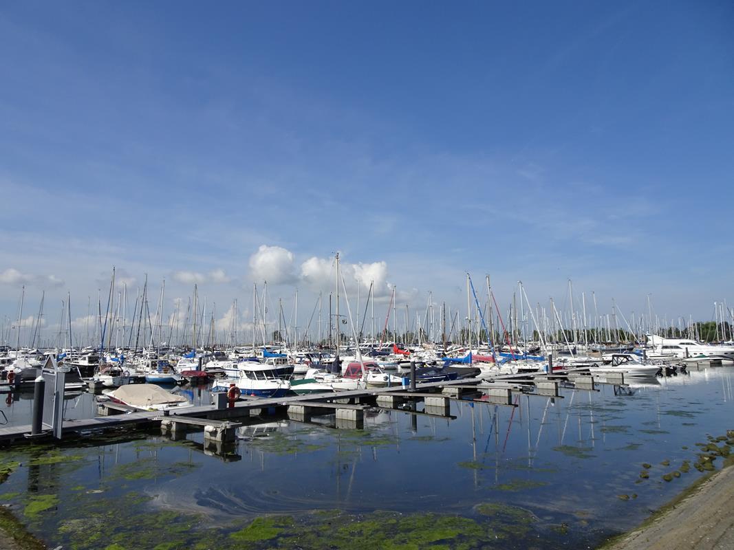 Vakantiehuis te koop Zuid Holland Hellevoetsluis Roompot park Cape Helius (10).jpg