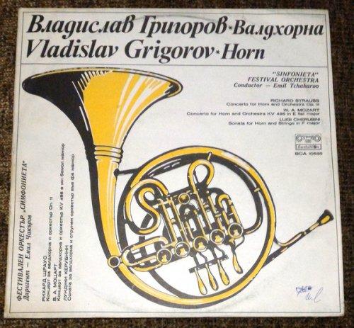 Vladislav Grigorov-Horn