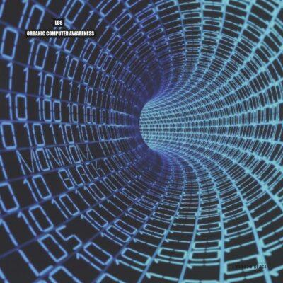 LDS | Organic Computer Awareness | MONNOM023