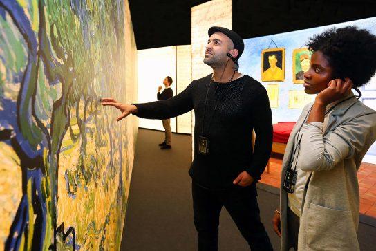 Meet Vincent van Gogh BN020 HR