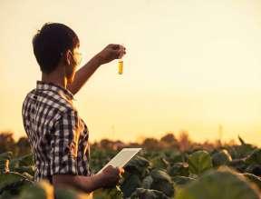Agrarwissenschaft Studium