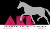 AKL German Riding Ponies