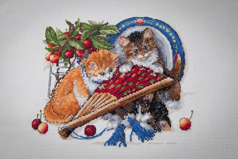 Kittens and Cherries