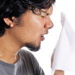 høfeber allergi pollen