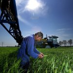 Pesticid EU Regeringen Esben Lunde Larsen Vinterbyg