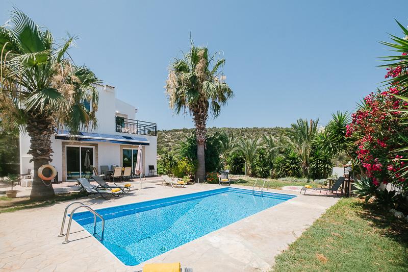 Aphrodite Villa picture