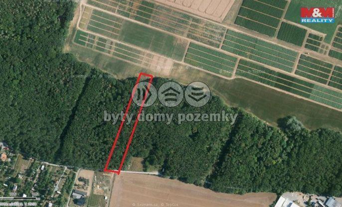 Prodej, Les, 3264 m², Troubsko