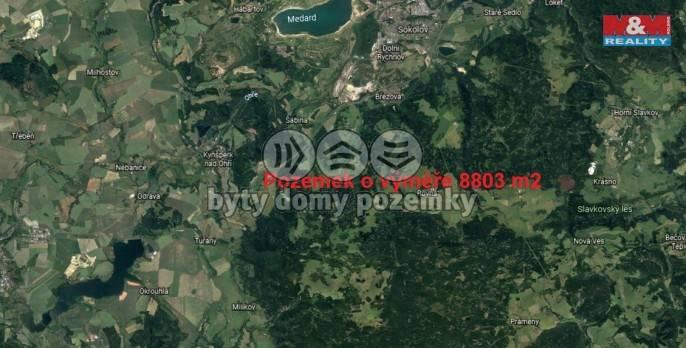 Prodej, Louka, 8803 m², Březová