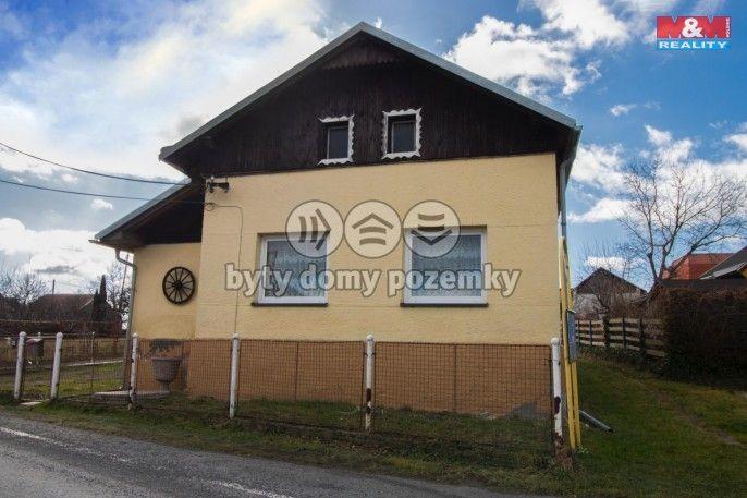 Prodej, Rodinný dům, 412 m², Bílovec
