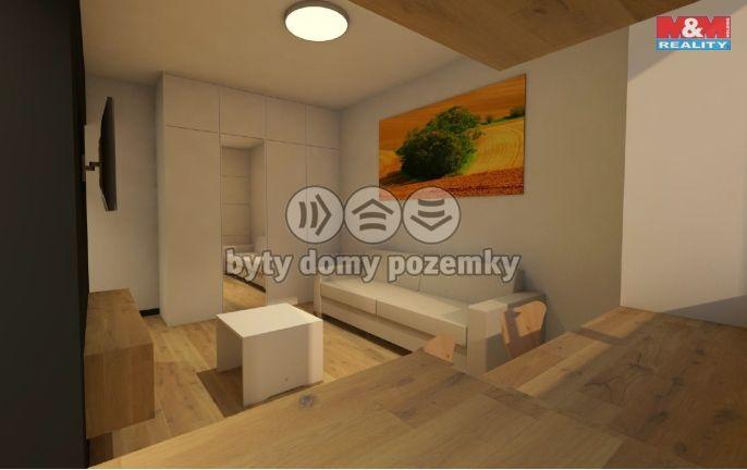 Pronájem, Byt 1+kk, 25 m², Opava, Joy Adamsonové
