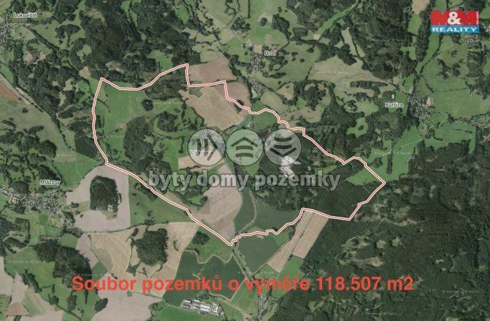 Prodej, Louka, 118183 m², Kolinec