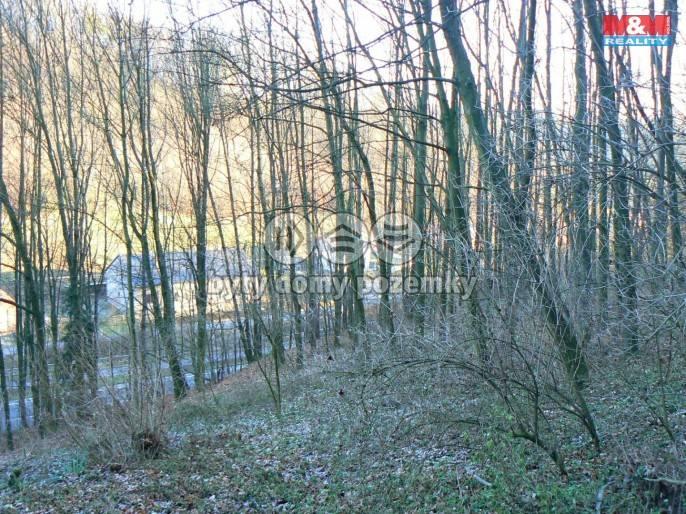 Les na prodej, Nový Jičín (Bludovice)