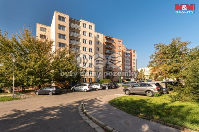 Prodej, Byt 1+1, 41 m², Brno