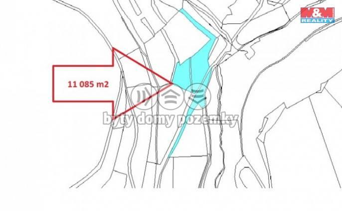 Prodej, Les, 12617 m², Petrovice