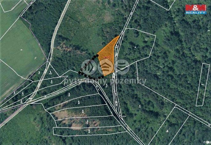 Prodej, Les, 4886 m², Poleň