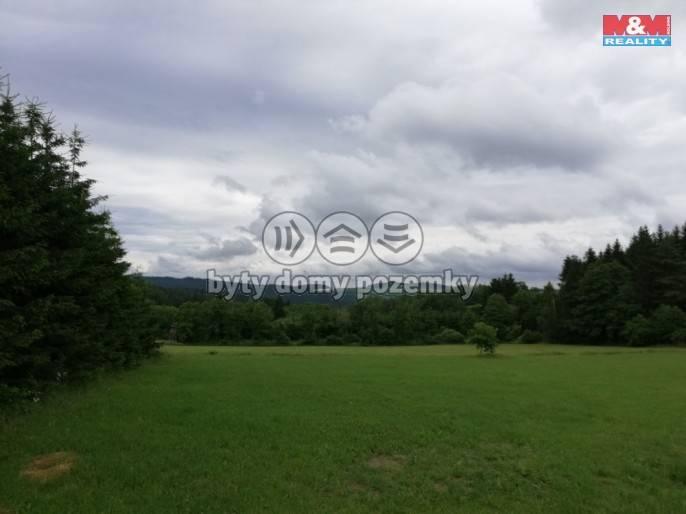 Prodej, Stavební parcela, 2386 m², Nová Ves
