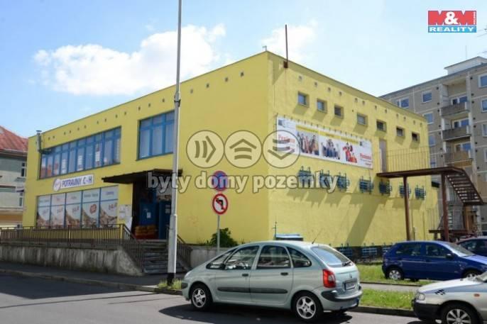 Pronájem, Obchod a služby, 297 m², Sokolov