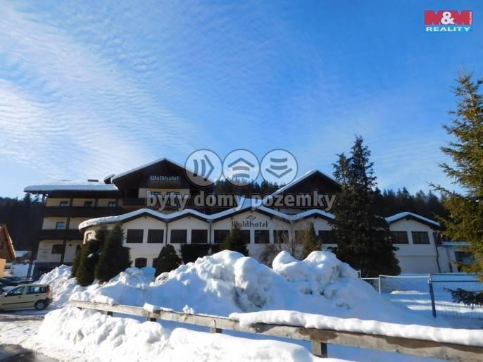 Prodej, Hotel, penzion, 7000 m², Železná Ruda, Špičácká