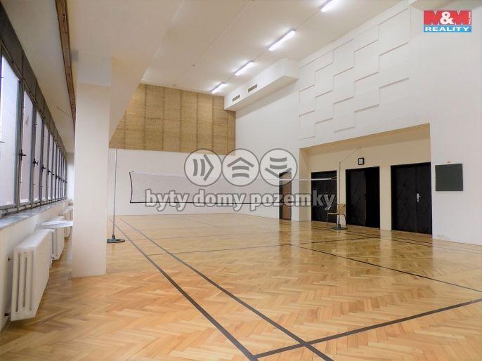 Pronájem, Ostatní, 295 m², Ústí nad Labem