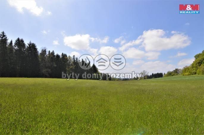 Prodej, Louka, 65181 m², Javornice