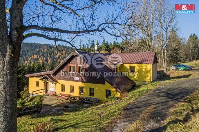 Prodej, Hotel, penzion, 3256 m², Strážné