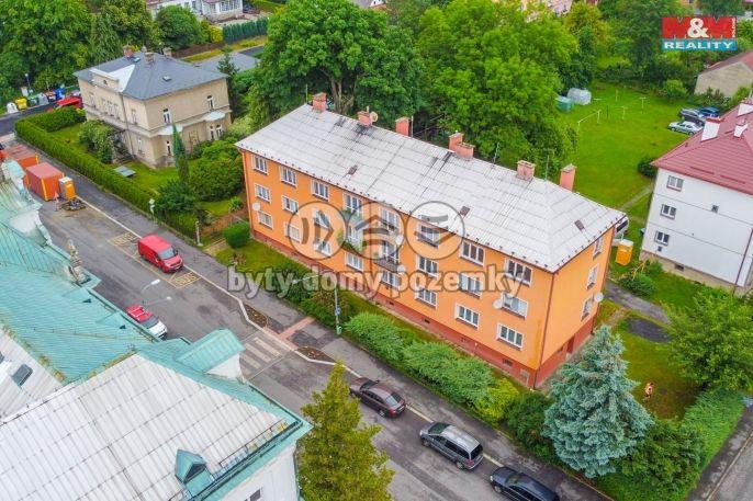 Prodej, Byt 2+1, 63 m², Nový Bor, Wolkerova