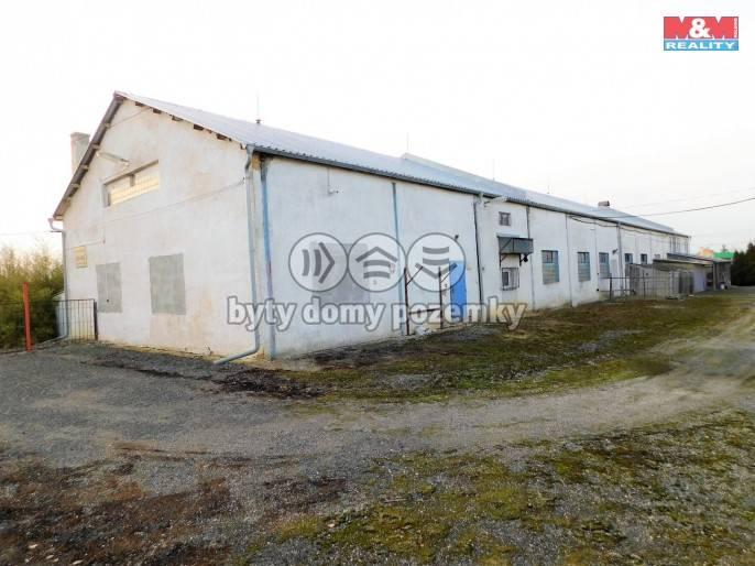 Prodej, Výrobní objekt, 21263 m², Odrava