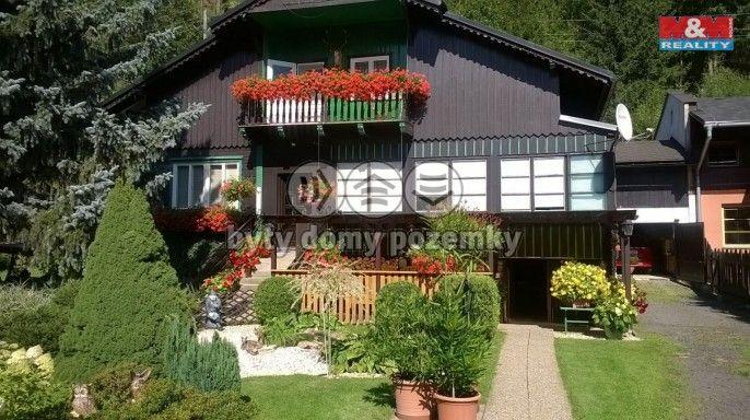 Prodej, Rodinný dům, 1586 m², Světlá Hora