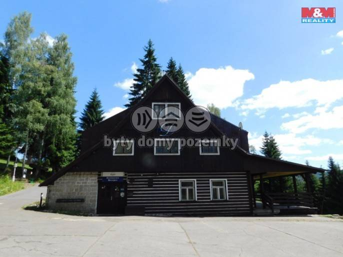 Pronájem, Hotel, penzion, 3700 m², Harrachov