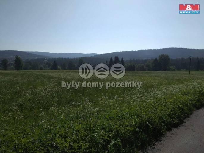 Prodej, Louka, 5744 m², Borová Lada