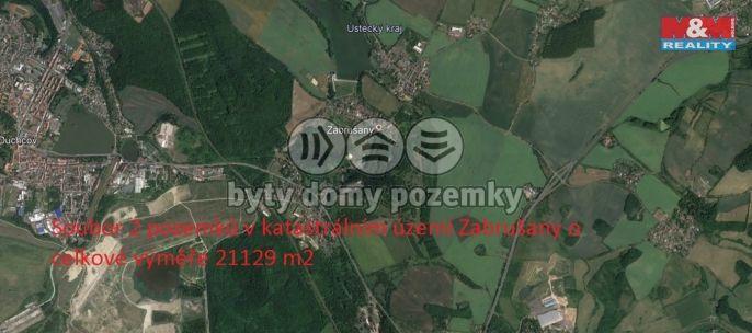 Prodej pole v Zabrušanech, 21129 m2