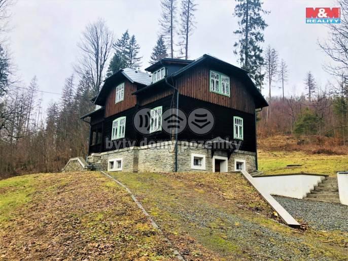 Prodej, rodinný dům, 200 m², Holčovice