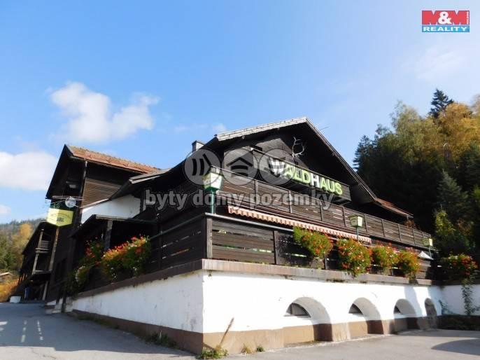 Prodej, Hotel, penzion, 5000 m², Železná Ruda, 1. máje