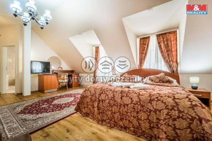 Pronájem, Hotel, penzion, 800 m², Plzeň, Zbrojnická