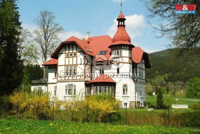 Prodej, Hotel, penzion, 771 m², Vrbno pod Pradědem