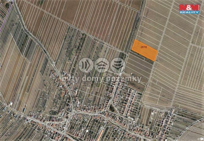 Prodej, Pole, 5315 m², Šakvice