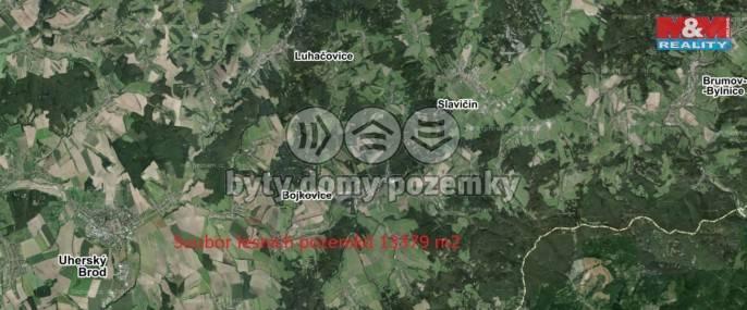 Prodej, Les, 13379 m², Bojkovice