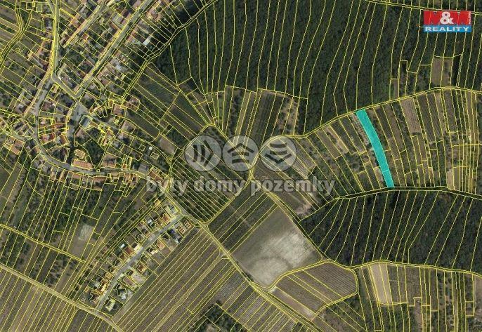 Prodej, Vinice + sklípek, 5779 m², Němčičky