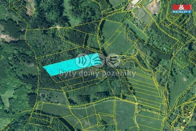 Prodej, Les, 17851 m², Třebušín