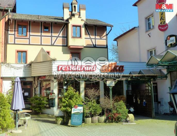 Prodej, Hotel, penzion, 515 m², Cheb, Jiráskova