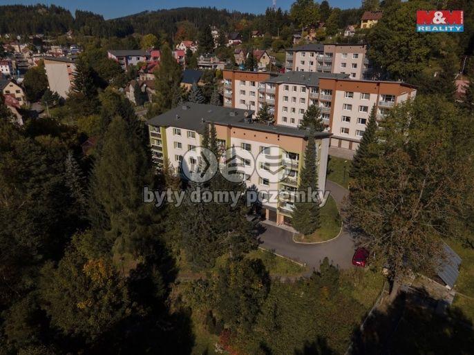 Prodej, Byt 3+1, 82 m², Smržovka, Luční